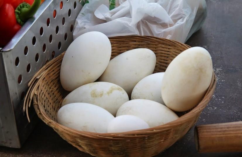 Польза и вред гусиных яиц