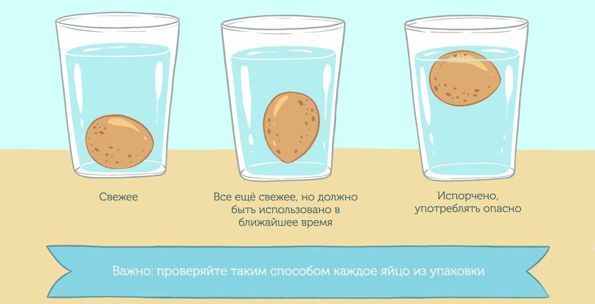 Как проверить свежесть яиц водой