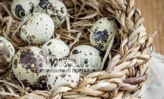 Свежие перепелиные яйца