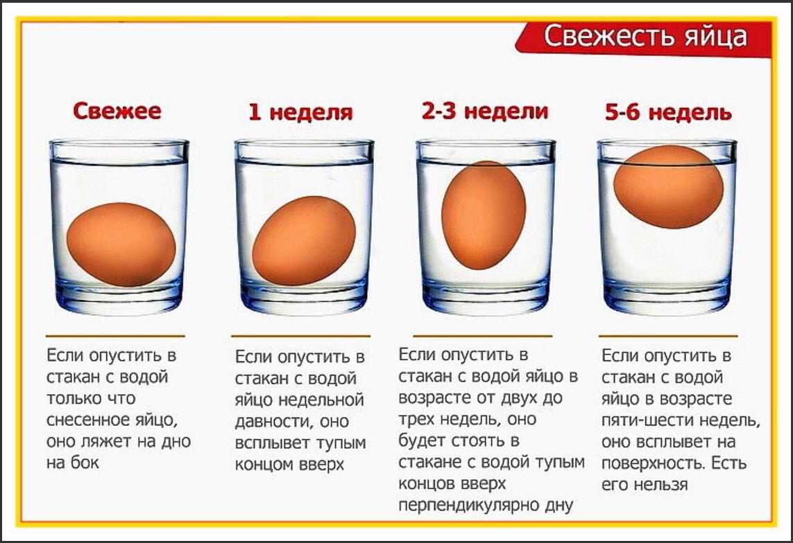 Сроки хранения яйца