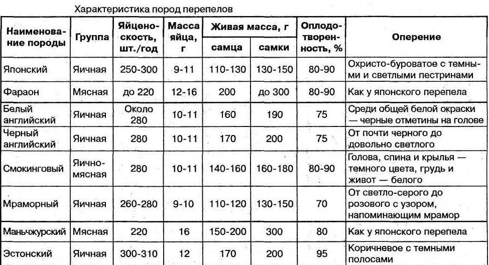 Таблица веса перепелиных яиц