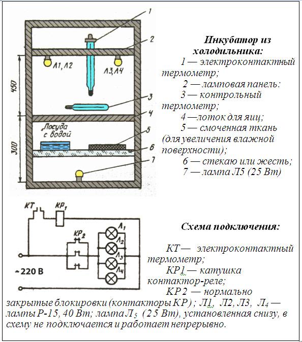 Схема самодельного инкубатора