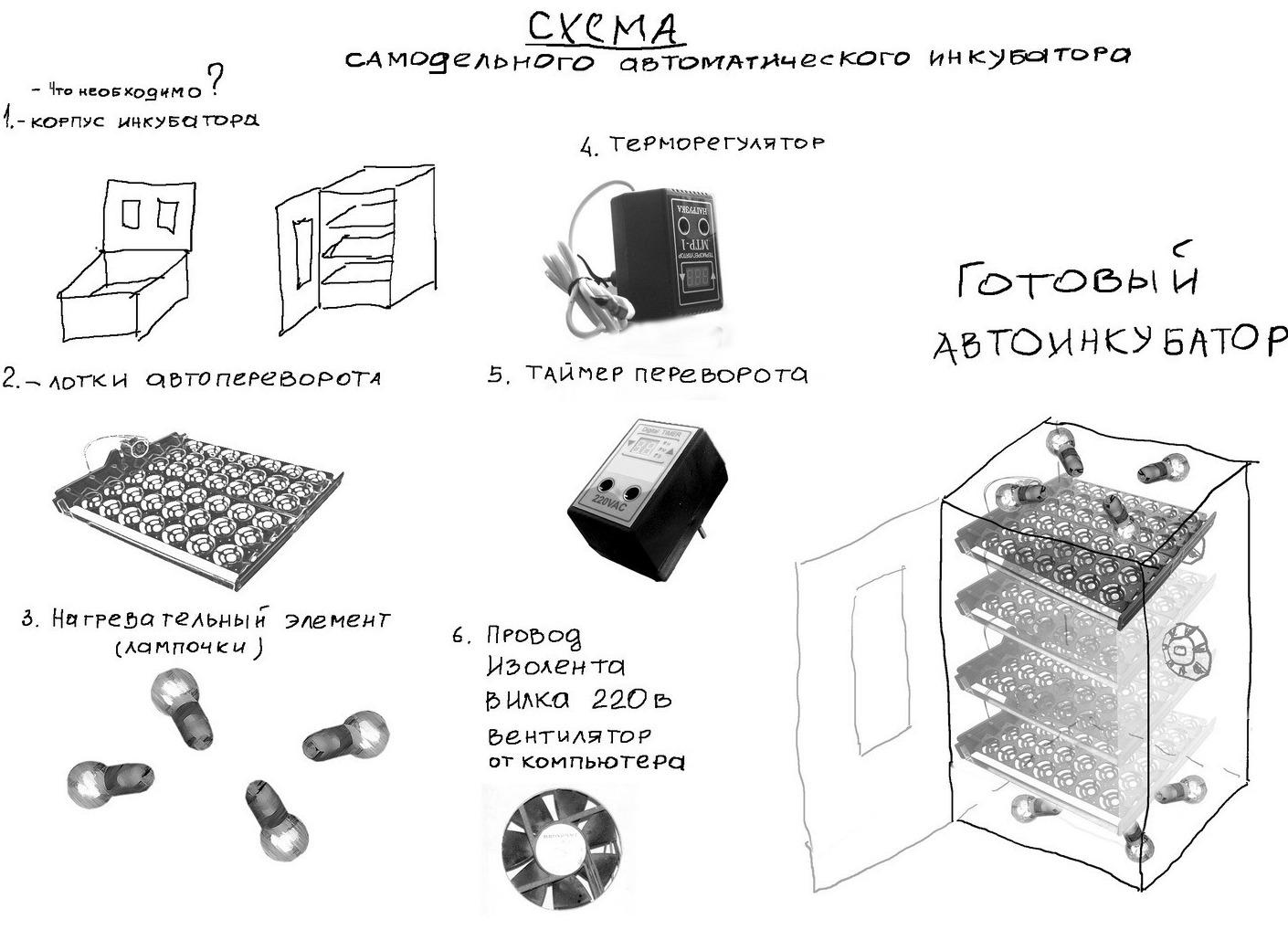Самодельный автоматический инкубатор